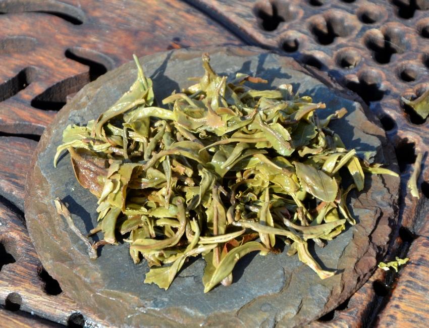 Goomtee Muscatel First Flush 2017 -Tee der ersten Frühlingsernte 2017 (Anfang März) des Goomtee Tea Estate in Darjeeling, Nordostindien