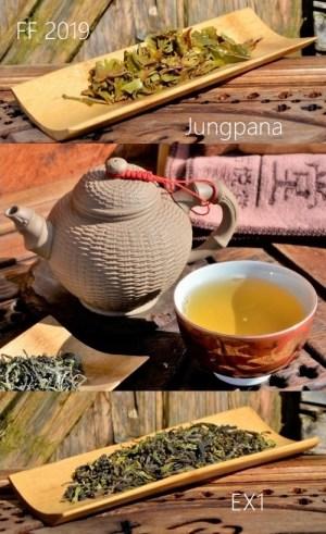 Jungpana First Flush 2019 Spring Wonder EX1 - Erste Frühlingspflückung 2019 des Jungpana-Teegarten in Darjeeling