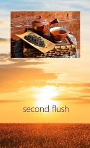 Second Flushes