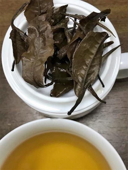 Ancient Snow Shan Sheng Pu Erh Tee -nasse Teeblätter, Aufgussfarbe