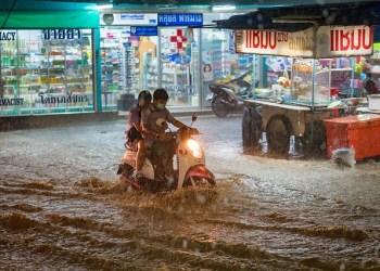 La leptospirose se développe dans les eaux et sols contaminés par les excréments de rongeurs et animaux. Elle se propage plus rapidement lors d'inondations.