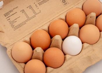 Les œufs de poule en batterie ne sont plus le premier choix des consommateurs en France