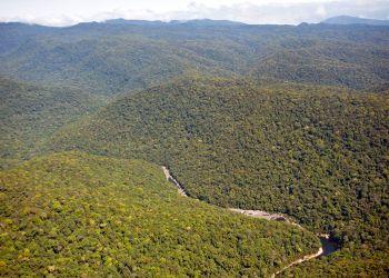 Laos : le gouvernement crée deux nouveaux parcs nationaux