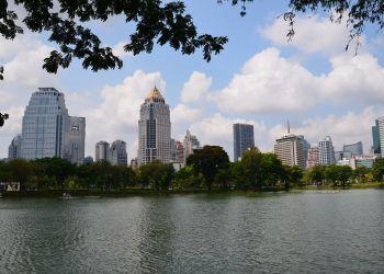 Bangkok : la municipalité va planter 100 000 arbres cette année