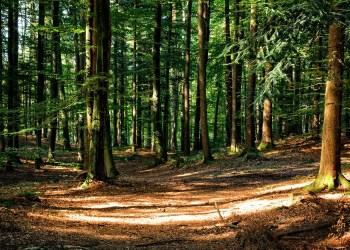 La France inaugure son onzième parc national