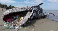 Image result for raise awareness on plastics