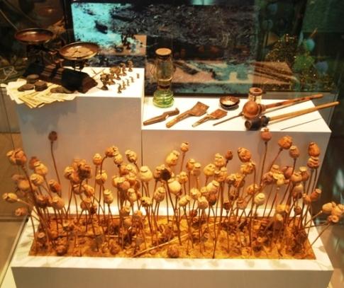 Doi Tung Royal Development Project: Hall of Inspiration, Opium Exhibit