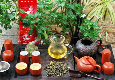 Exploring Ruan Zhi No. 17 Oolong Tea from north Thailand