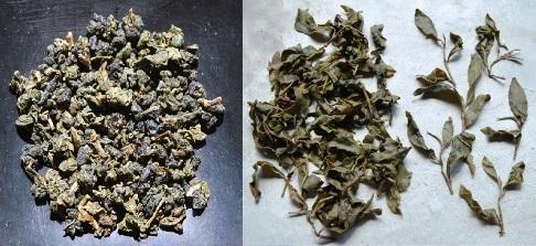 Doi Mae Salong Ruan Zhi No. 17 oolong Tea, dry and wet leaves