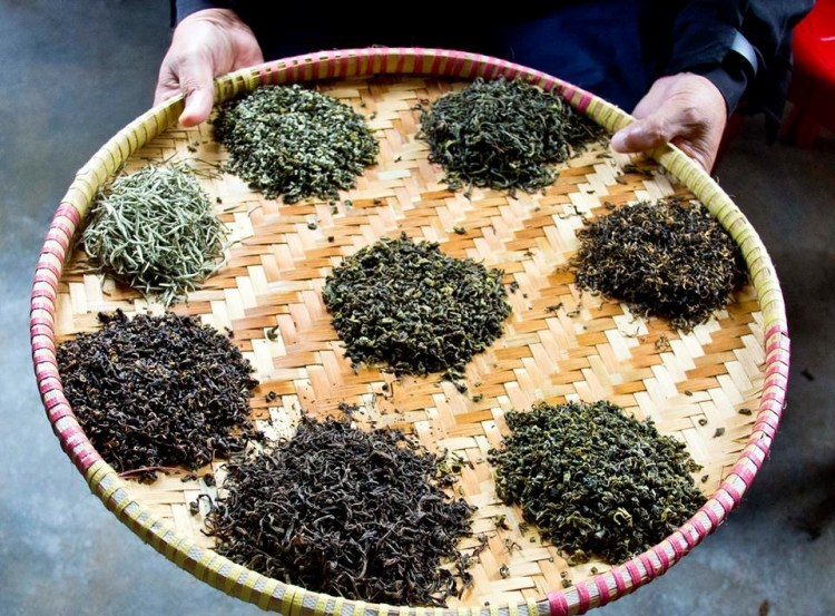 Objective Criteria for the Assessment of Tea Quality
