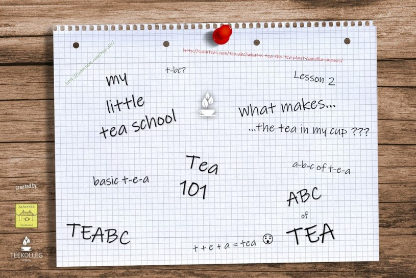 My Little Tea School - The ABC of Tea : Lesson 2 - The Tea in Your Cup