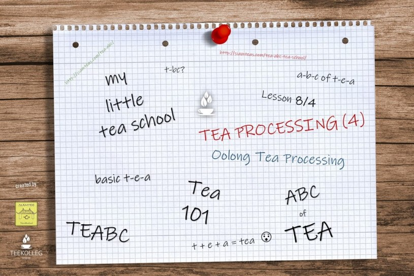 My Little Tea School - The ABC of TEA : Lesson 8.4. - Oolong Tea Processing