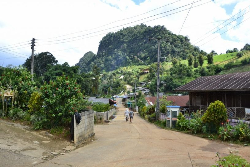 Ban Pang Kham - home of ShanTea : door to the mountainous Thai /Myanmar green border region