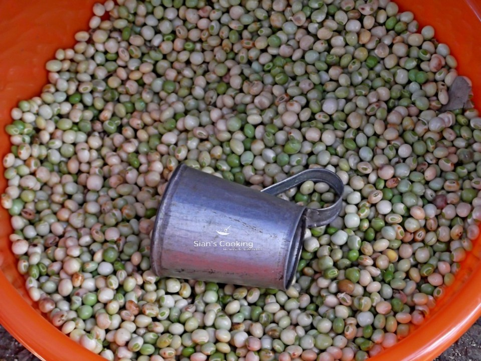 dried gungo peas with a measuring cup