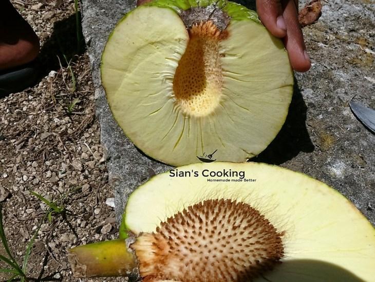 Whole cut breadfruit