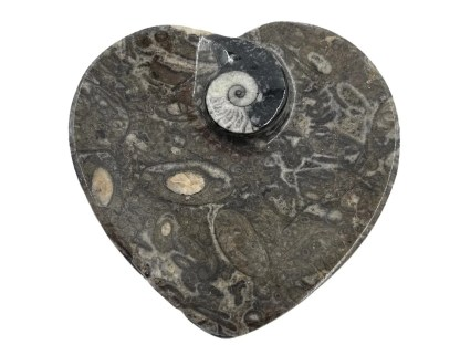 Heart fossil bowl