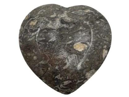 Heart fossil bowl bottom