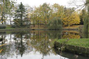 Bassin des Huit Arpents à Andilly