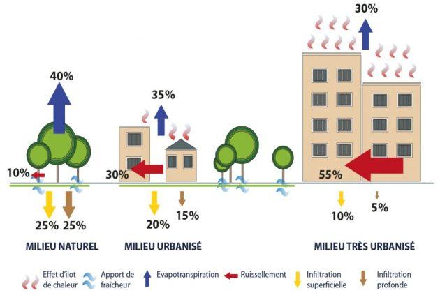 Impact de l'urbanisation dans le processus d'infiltration, d'évaporation et de ruissellement