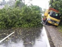 Hujan Deras dan Angin Kencang, Rumah Warga Rusak, Akses Jalan tertutup Pohon Tumbang