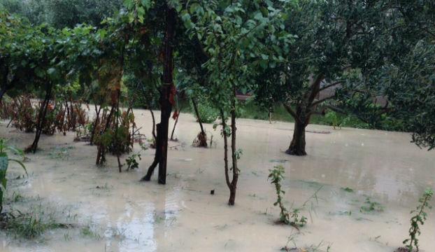 poplava_njivice2