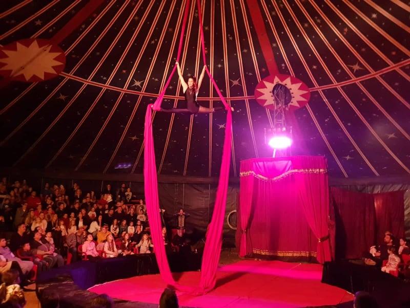cirkus8