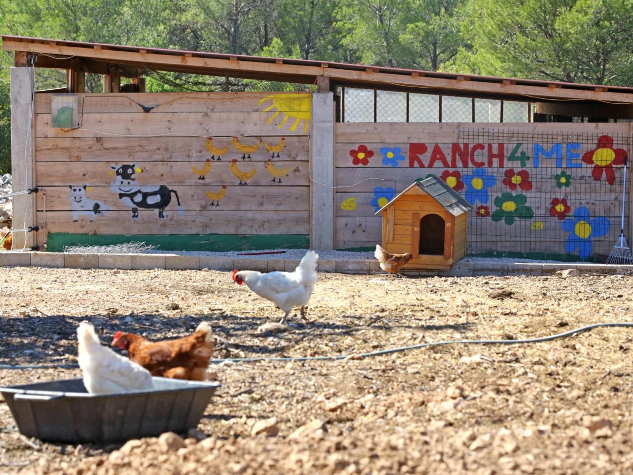 opg ranch 4 Me 230921 20
