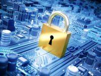 Siber güvenlik start-up'larını taşerondan ayırmada Havelsan'ın rolü