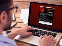 ESET, küresel fidye yazılımı önleme girişimine girdi
