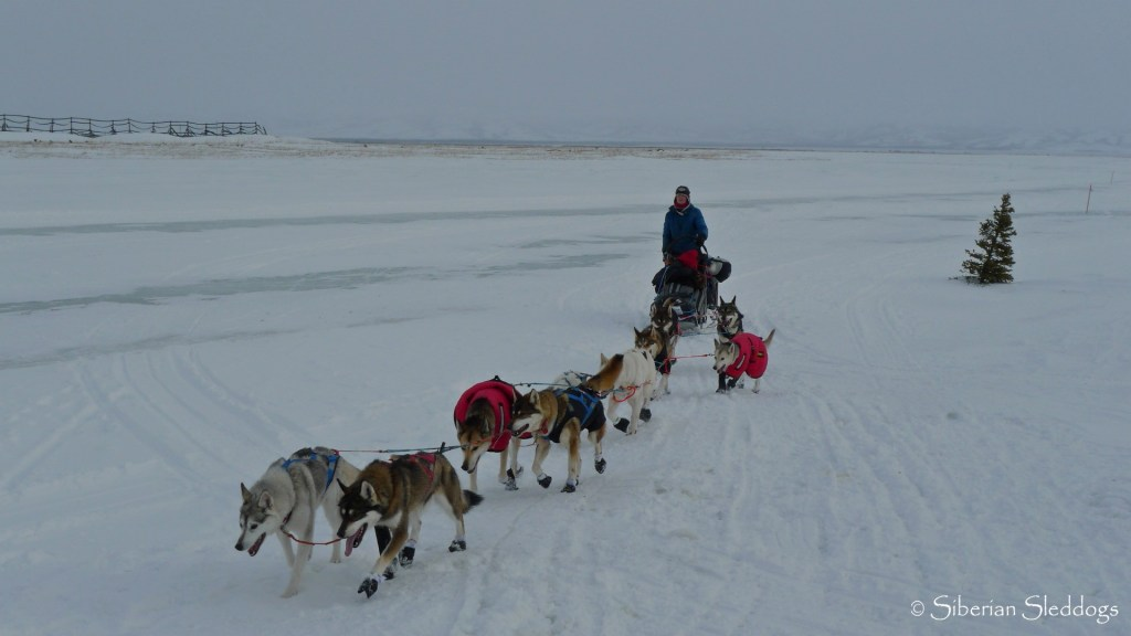 Our team coming into Unalakleet