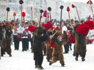 The Bear's Dance