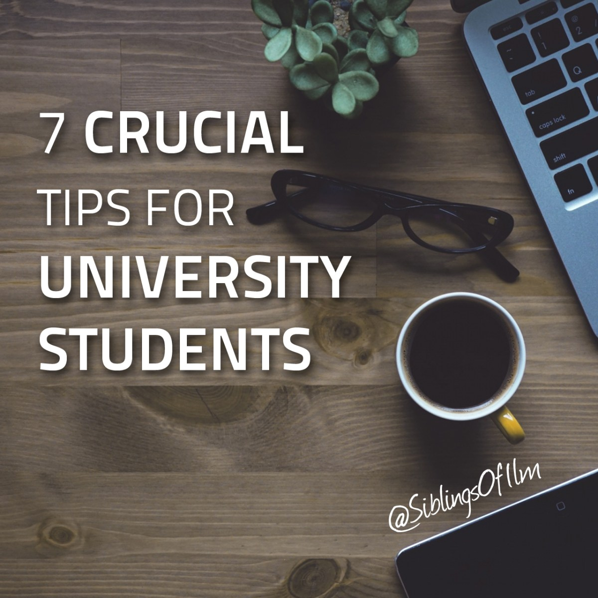 7 Crucial Tips For University Students