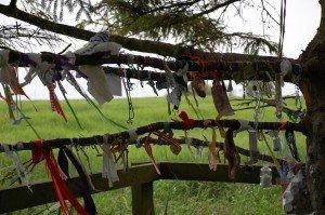 prayer cloths at St Brigid's well, near Kildare, Ireland