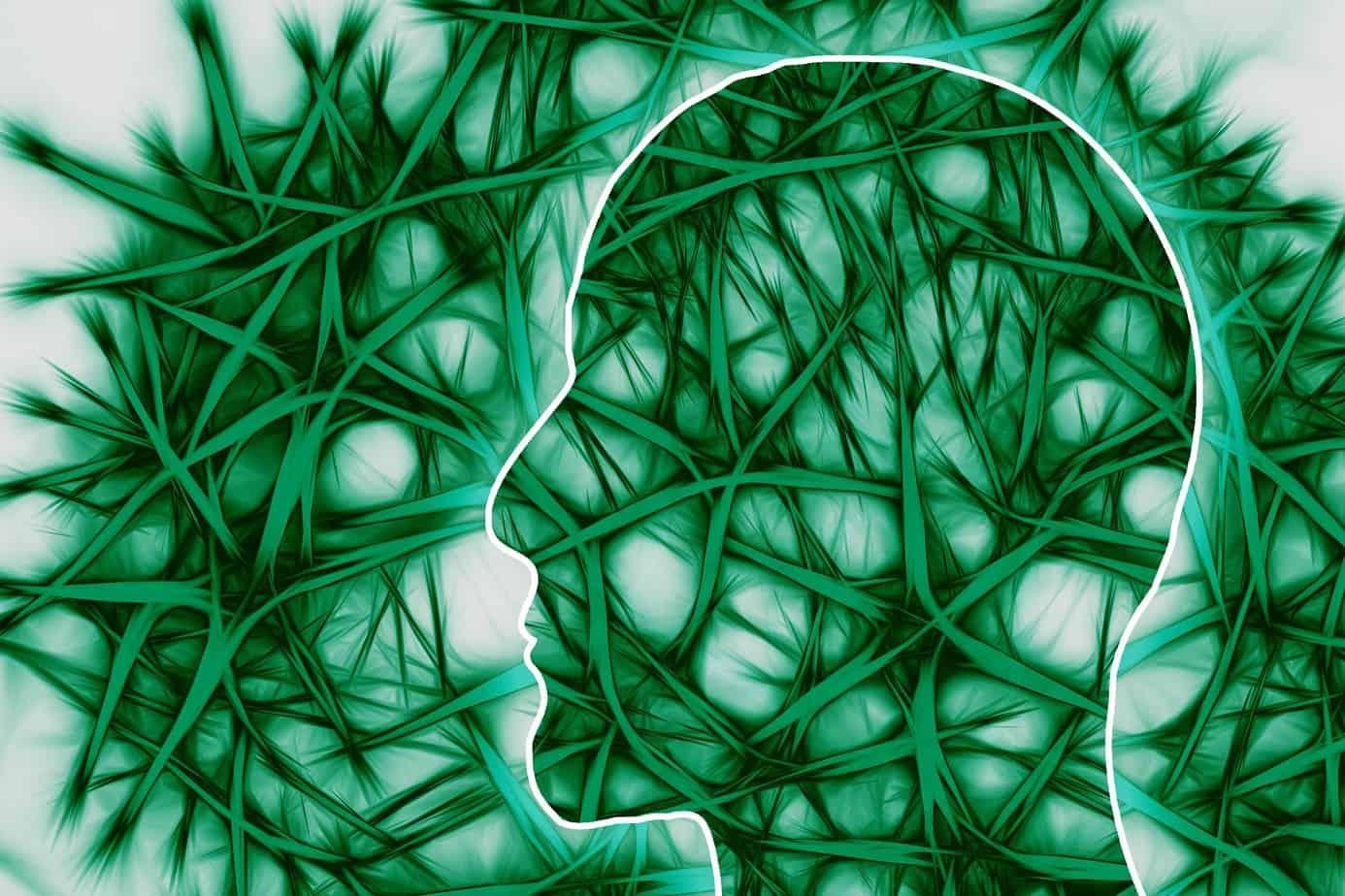 Vagusnerv Nervenbahnen Gesundheit