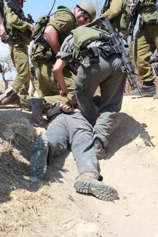 palestine soldiers photo