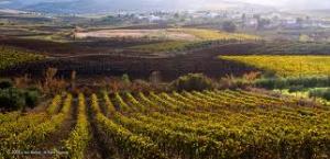 Сицилия осенью
