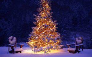 albero-natale-neve