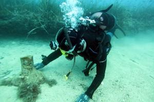 Archelogia subacquea anfora