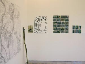 l'opera di Lois  Weinberger presso Palazzo Milio
