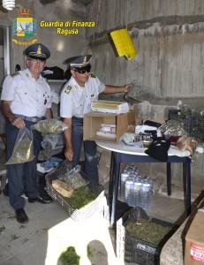 Ragusa_Guardia di Finanza Marijuana (2)