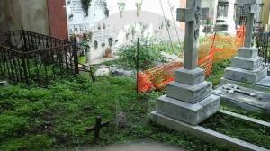 Cimitero acattolico 2-11-2015 c