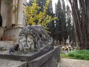 Cimitero Palermo 3