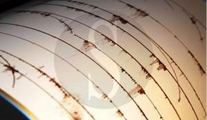 rischio sismico, sismografo