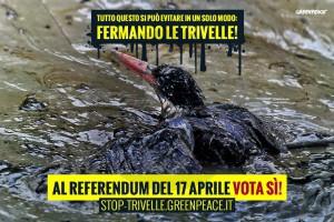 Greenpeace, no trivelle