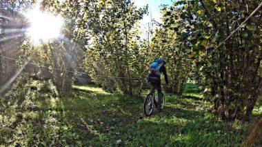 bike tour uomo in bicicletta nella natura
