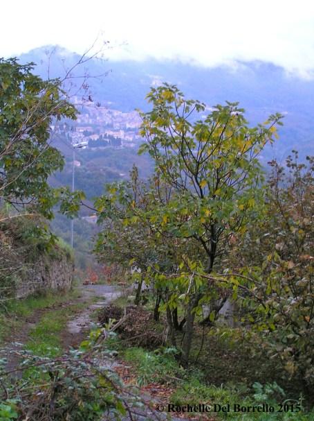 Sad road to Raccuja