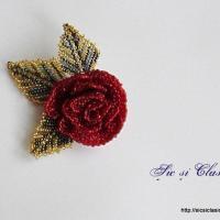 Floarea tinereţii - Flower of life