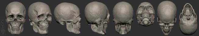 Male European skull turnaround