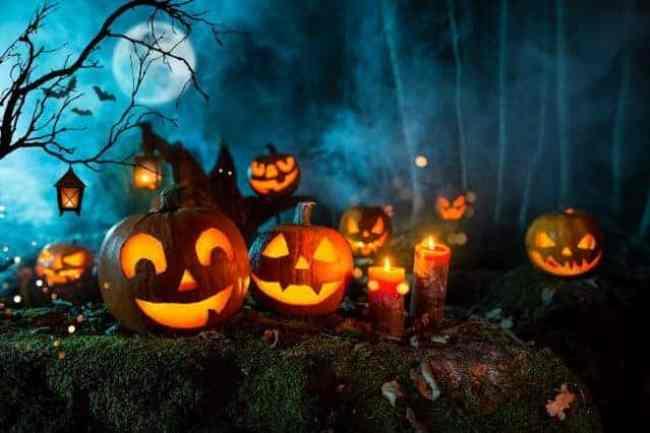Halloween Pumpkins e1571789274668