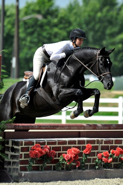 New Orleans – 2007 Hanoverian filly bred by Edgewood Meadow Farm as Fleuretta EMF (Fabuleux-Fun Choice xx) and bought in 2009 by Muny Sunk Stables – ridden by Liza Towell Boyd, qualifying for the inaugural 2013 USHJA Pre-Green Incentive Program (PGIF) Finals. Photo by Flashpoint Photography